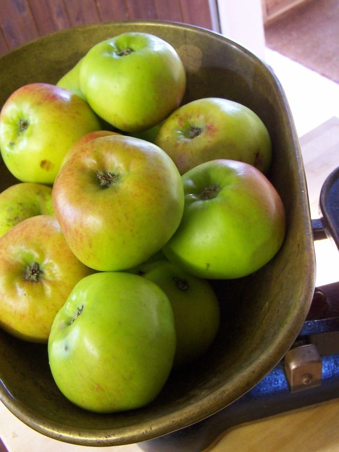 Preserving Class: Autumn Apples